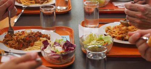 Le végétarien au menu des députés
