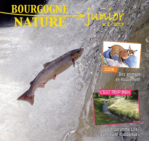 Parution de l'outil pédagogique Bourgogne-Nature Junior n°8