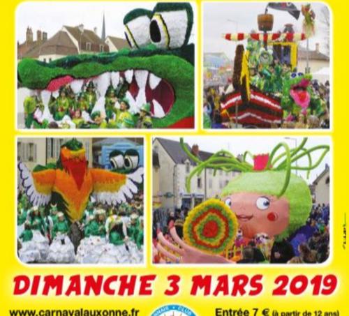 Le carnaval d'Auxonne, c'est ce dimanche !