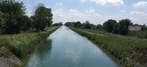 Chien coincé sous le canal de Bourgogne : le préfet réagit