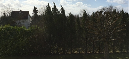 Le vent va encore continuer de souffler en Côte d'Or