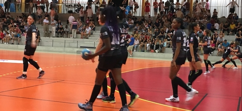 La JDA Dijon Handball trébuche à Chambray