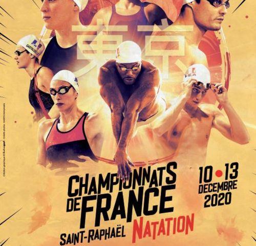 Natation: 5 nageurs de l'Alliance Dijon Natation aux Championnats...