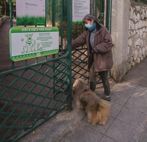 Palmarès des villes où il fait bon vivre avec son chien : Dijon 14ème