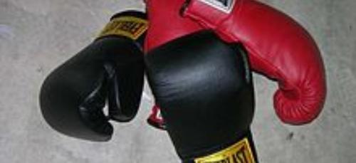 Boxe. Un gala à St Avé