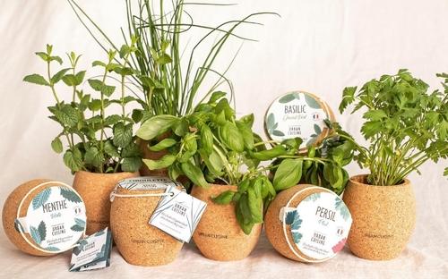 Cultivez facilement des fruits, légumes et herbes aromatiques, avec...