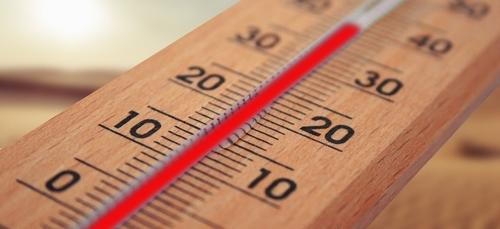 Record de chaleur à Brest.