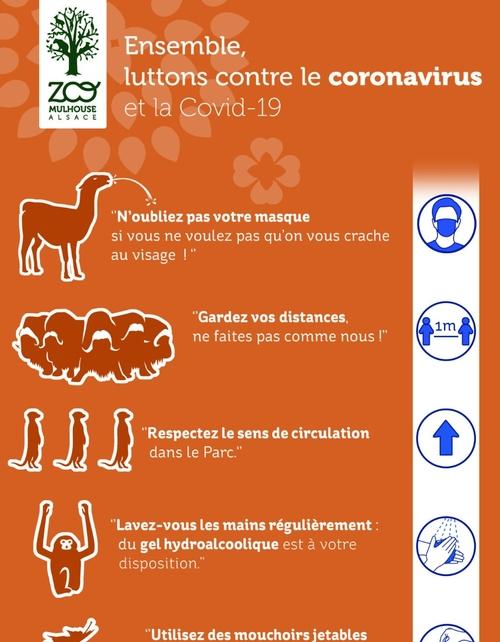 Ouverture du Zoo de Mulhouse le 3 juin