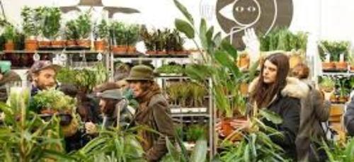 Une grande vente de plantes organisée à Paris