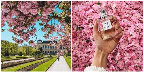Paris : une exposition Chanel gratuite s'installe au Jardin des...