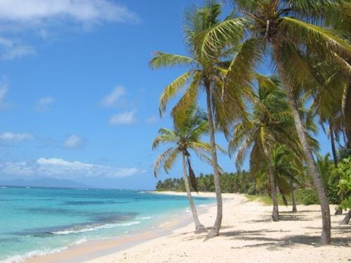 Vers un nouvel assouplissement des mesures sanitaires en Guadeloupe