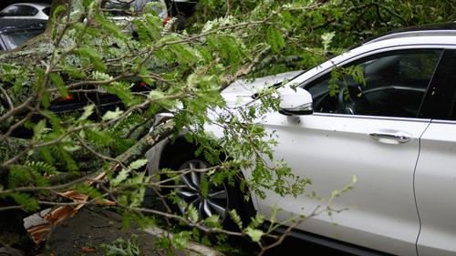 Tempête Aurore : 250 000 foyers privés de courant