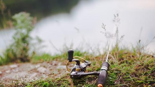 Des poissons morts au Lac de Bairon.