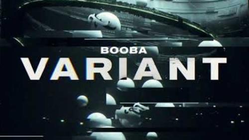 Booba - Variant (Audio)