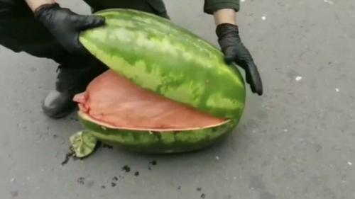 En ouvrant ces pastèques, la police tombe sur une substance...