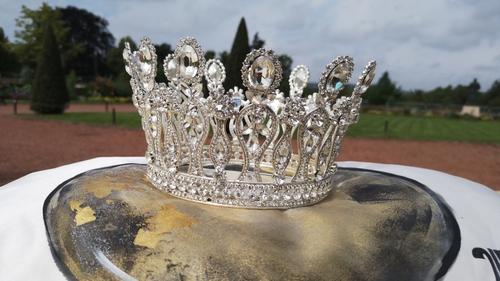 Reine de la Mirabelle à Metz : huit candidates pour une couronne