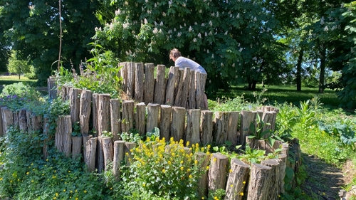 Vie Étudiante : Un jardin partagé sur le campus du Saulcy à Metz