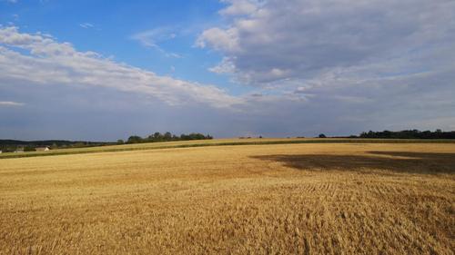 La Meurthe-et-Moselle passe en vigilance sécheresse
