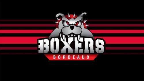 Les Boxers de Bordeaux dévoilent leur nouveau maillot