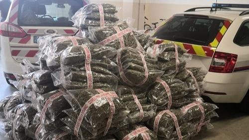 Trafic de drogue en Côte d'Or : plus de 3 millions d'euros saisis...