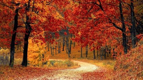 L'automne commence à 21h21 !
