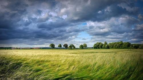 Un coup de vent attendu la nuit prochaine en Centre-Val de Loire