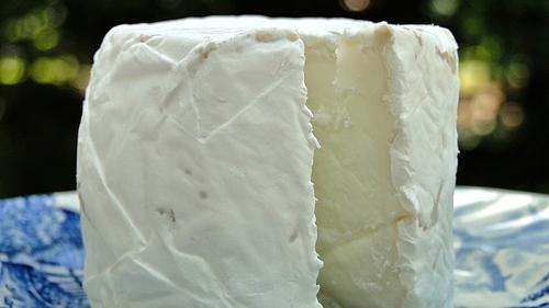 Vienne : une suspicion de listériose dans un fromage de chèvre...