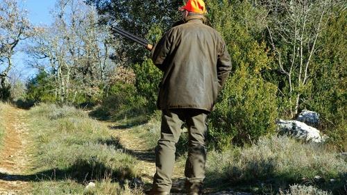 Accident de chasse en Gironde : un chasseur reçoit deux plombs dans...