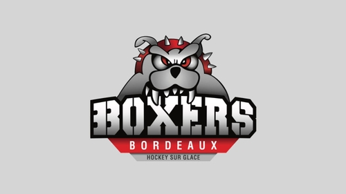 L'actualité des Boxers de Bordeaux