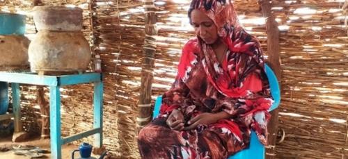 Joie et larmes au Darfour après la détention d'un suspect accusé...