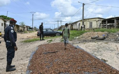 La difficile lutte contre le travail des enfants dans le cacao en...