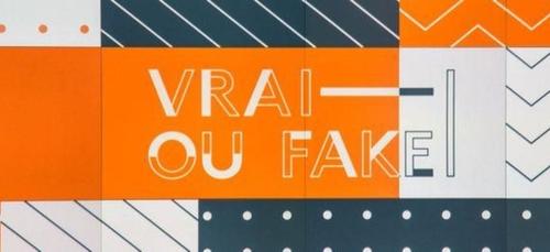 """""""Vrai ou Fake"""" : émission spéciale """"Conflit Israëlo-Palestinien"""" ce..."""