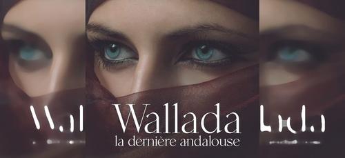"""""""Wallada, la dernière andalouse"""", 1er roman de Sidali Kouidri Filali"""