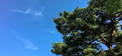 Météo du week-end : un temps calme et ensoleillé sur les 3/4 du pays