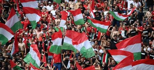 Des cris de singe pendant Hongrie-France ? L'UEFA ouvre une enquête