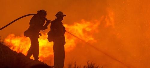 Brésil : toujours autant de feux de forêt en Amazonie
