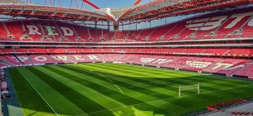17 cas positifs : le Benfica Lisbonne décimé par le Covid