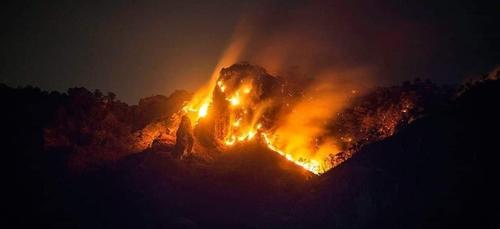 130 hectares de forêt détruits par un incendie au Mexique (vidéo)