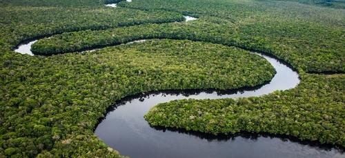 Incendies : l'Amazonie brésilienne vit son pire mois de juin depuis...