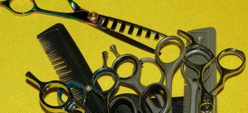 Le salon de coiffure Ct' hippique à Craon recherche un(e) salarié(e)
