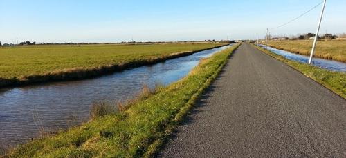 Arsenic dans le marais breton : une plainte bientôt déposée