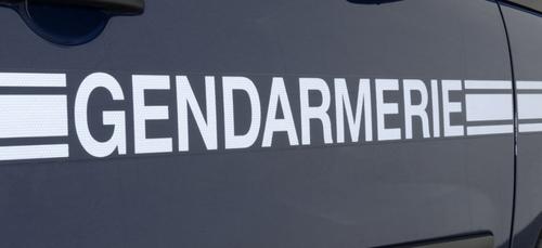 Vertou : deux fillettes retrouvées par les gendarmes après quatre...