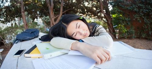 le bon plan crevard : La sieste au boulot c'est possible avec la...