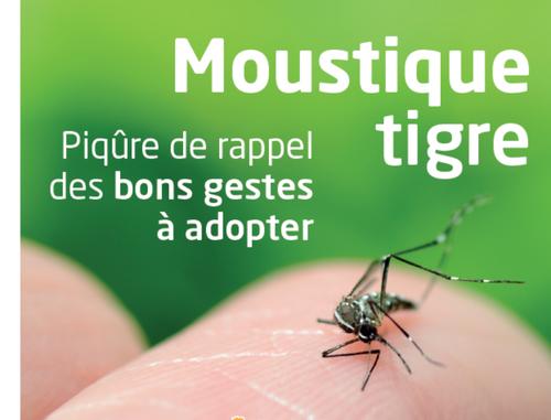 Toulouse. La chasse aux moustiques est ouverte