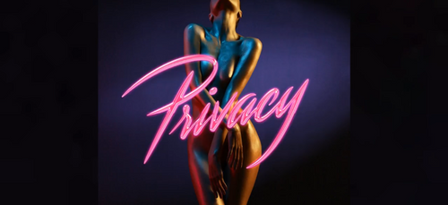 CHRIS BROWN - Privacy (Audio)