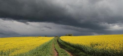 Météo du week-end : peu de soleil avant le retour des orages