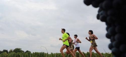 Succès pour le 31ème marathon du Médoc