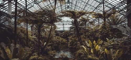 Les serres urbaines bioclimatiques : la climatisation par les plantes
