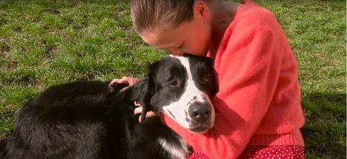 Fondation Frédéric Gaillanne : des chiens guides pour les enfants...