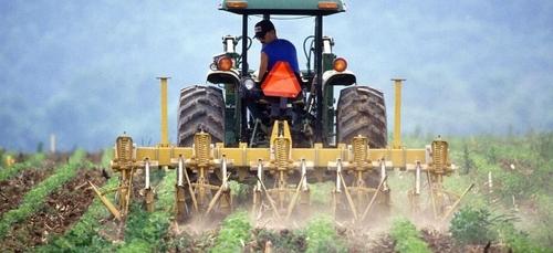 Les agriculteurs ont besoin de 200 000 paires de bras